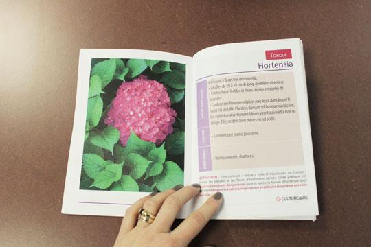 Ressource culture vie for Livret des fleurs